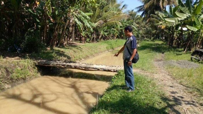 Ayah Asyik Main Merpati, Balitanya Tewas Mengambang di Irigasi