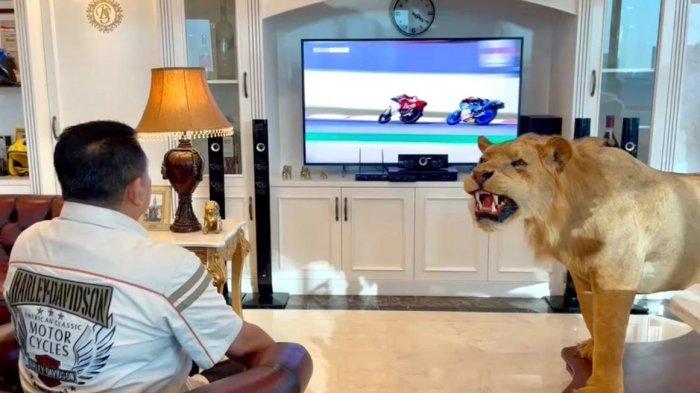 Bamsoet Apresiasi Perjuangan Mario Suryo Aji dalamRace 1 FIM CEV Moto3di Spanyol