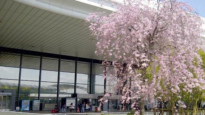 Antisipasi Terorisme, Pemerintah Jepang Perketat Inspeksi Keamanan di Bandara