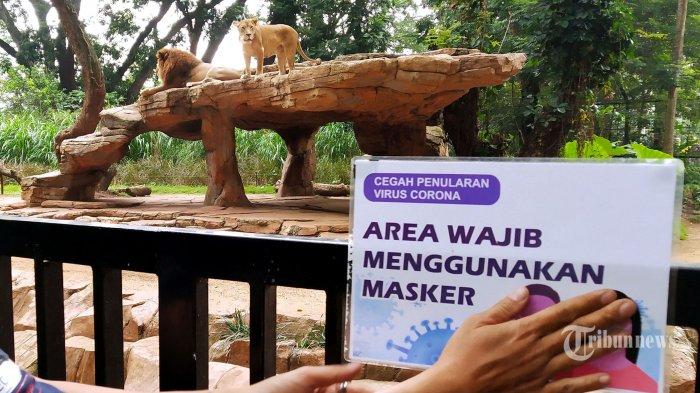 PPKM Level 4 di Bali Diperpanjang Karena Pasien Covid-19 di RS Masih Banyak, Ini Penjelasan Kadinkes