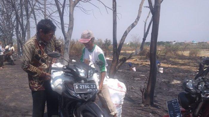 Warga Berebut Ribuan Bangkai Ayam yang Hangus Terbakar, Ternyata Digunakan untuk Ini