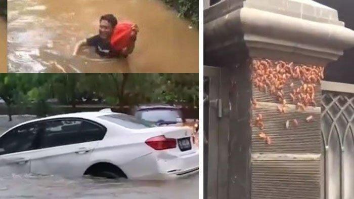 3 Peristiwa Unik Saat Banjir Jakarta: BMW Nyangkut Pohon hingga Kecoa Ngungsi di Pagar Rumah.