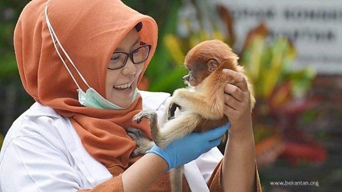 Profil Amalia Rezeki 21 Local Heroes, Penyelamat Bekantan yang Dapat Penghargaan dari Tribun Network