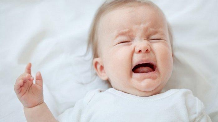 Hati-hati! Memberikan Madu Pada Bayi di Bawah 1 Tahun Bisa Menyebabkan Lumpuh
