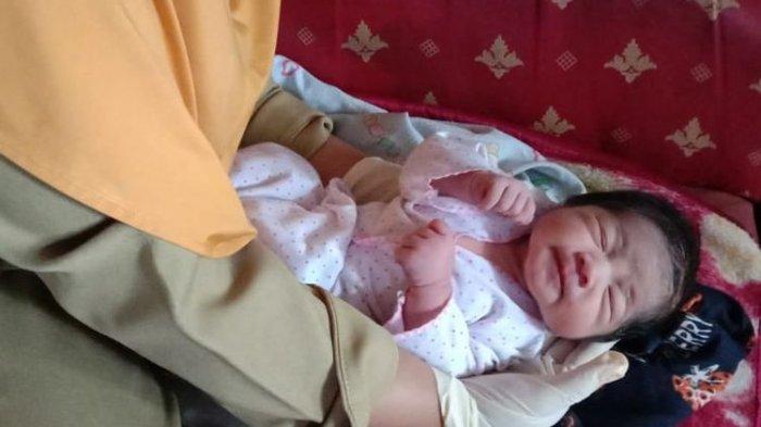 Sedang Mencari Kayu Bakar, Pria Ini Temukan Bayi Tanpa Busana Menangis di Tengah Sawah