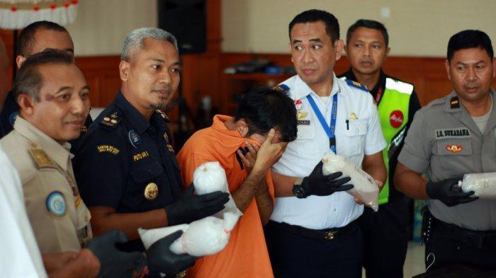 Bea Cukai Ngurah Rai Gagalkan Upaya Penyelundupan Ekspor Baby Lobster Senilai Lebih dari Rp1,5 M