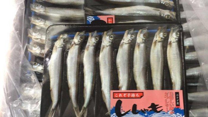 KKP: Larangan Produk Perikanan Indonesia ke China Hanya untuk Satu Perusahaan