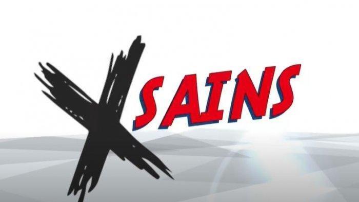X-Sains
