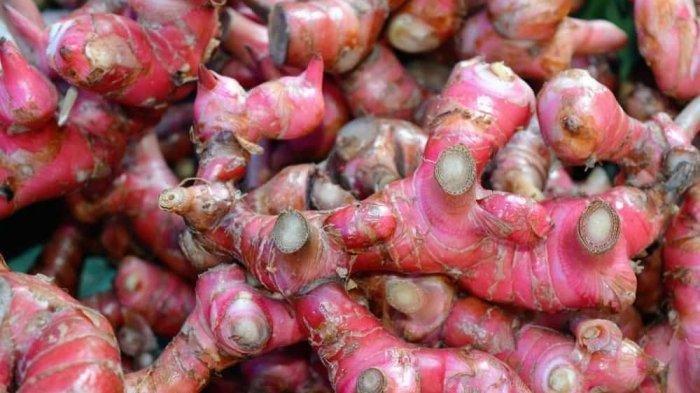 Jahe merah kaya akan antioksidan alami yang baik untuk sistem kekebalan tubuh.
