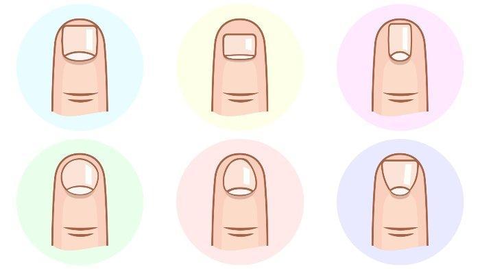 Tes Kepribadian - Bentuk Jari Kuku pada Tanganmu Dapat Ungkap Sisi Tersembunyi dalam Dirimu