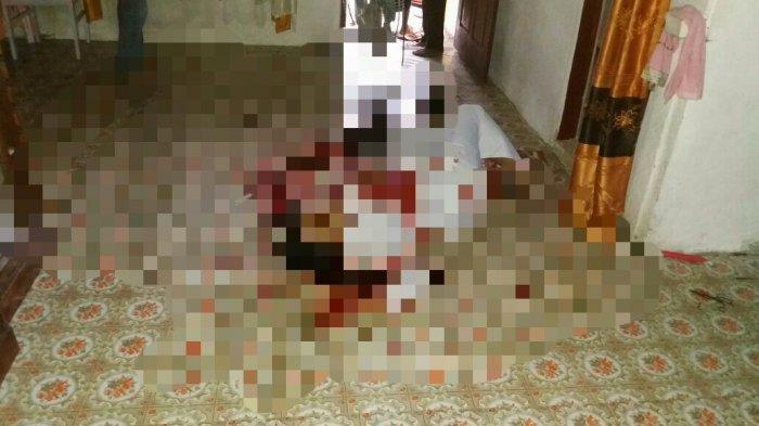 Hamdani Kabur ke Bogor Setelah Membunuh Istrinya, Polisi Meringkusnya di Rumah Kos