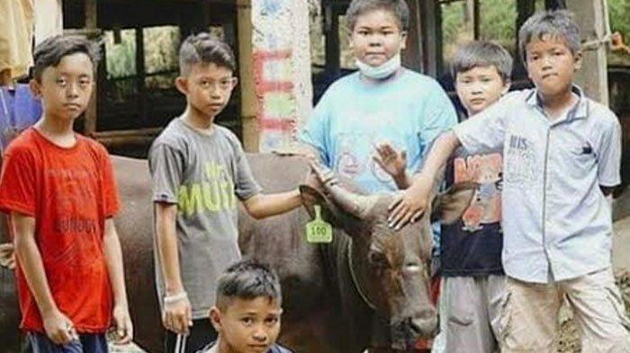 Viral Kisah 7 Bocah Asal Bogor Patungan Untuk Beli Sapi Kurban, Bayar Pakai Uang Tabungan