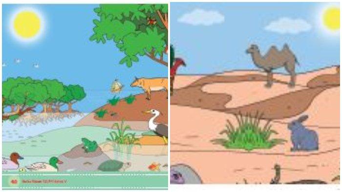 Buku Tematik Kelas 5 Tema 5 Subtema 1 Pembelajaran 6.
