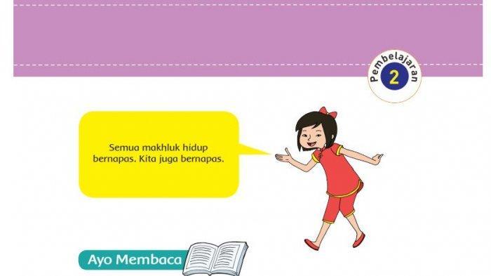 Kunci Jawaban Buku Tematik Tema 2 Kelas 5 Sd Mi Halaman 13 14 15 16 17 18 19 20 21 22 Subtema 1 Halaman All Tribunnews Com Mobile
