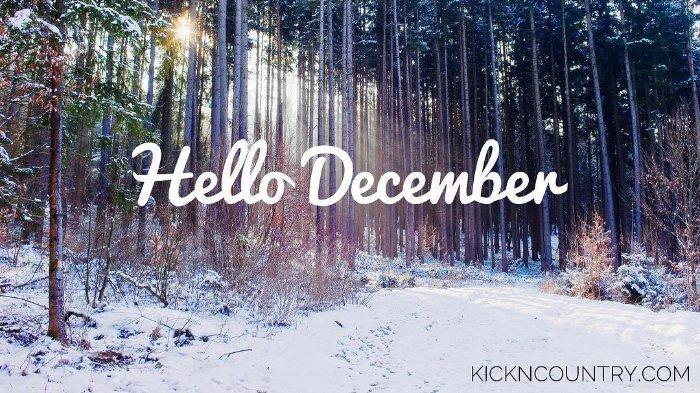 Bulan desember new
