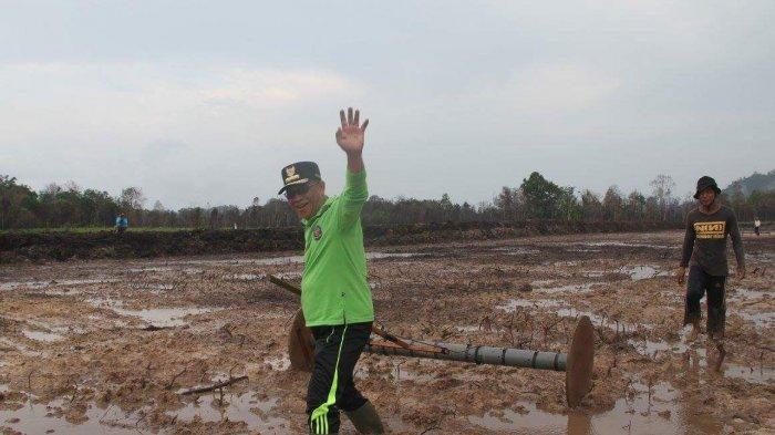 15 Februari, Lingga Jadwalkan Tanam Serentak di Lahan Seluas 1.800 Ha
