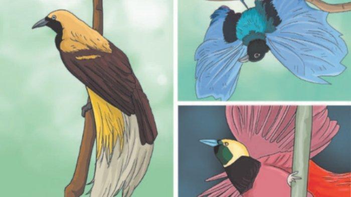 Burung Cenderawasih Halaman 47