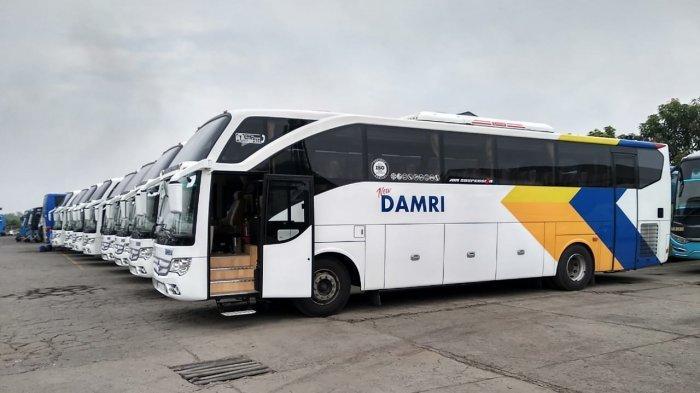Cegah Penyebaran Covid-19 di Dalam Bus, Armada Damri Kini Dilengkapi dengan Ion Plasmacluster
