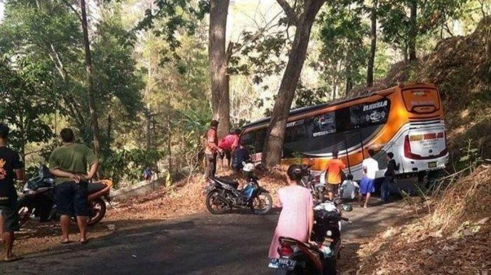 Bus PO Sudiro Tunggal Daya terjebak di jalanan sangat sempit di tengah hutan Wonogiri, Sabtu (19/10/2019)
