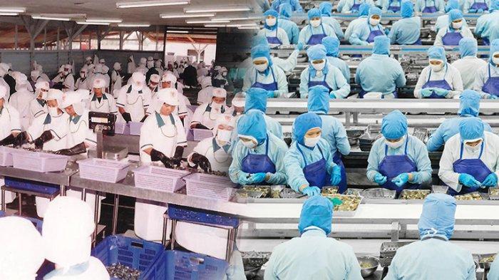 Meski di Masa Pandemi, CPRO Tetap Mencatat Kenaikan Penjualan dan EBITDA