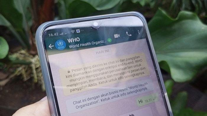 WHO Hadir Sebagai Chatbot Lewat WhatsApp, Ada Menu Myth-Busters untuk Menghindari Hoaks