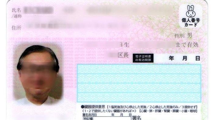 Tahun 2022 Kartu MyNumber Jepang Juga Bisa Berfungsi Sebagai SIM