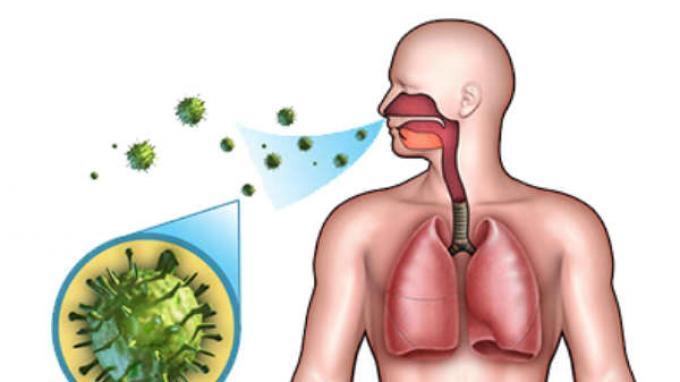 Coronavirus: Penyebab, Ciri - ciri hingga Cara Pencegahan Coronavirus