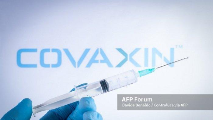 Seorang petugas kesehatan memegang jarum suntik di depan logo vaksin Covaxin di Barcelona, ??Spanyol, pada tanggal 18 Mei 2021. Covaxin adalah vaksin Covid-19 pertama di India, dan diproduksi oleh Bharat Biotech. Jabs sedang diberikan kepada penduduk India untuk menghentikan gelombang kedua Covid-19 di negara itu.