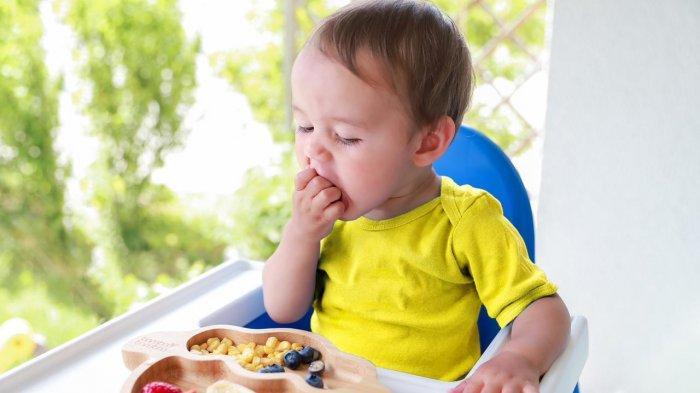 Dari Buah Sampai Biskuit Bayi, 5 Camilan untuk Perkembangan Motorik Anak