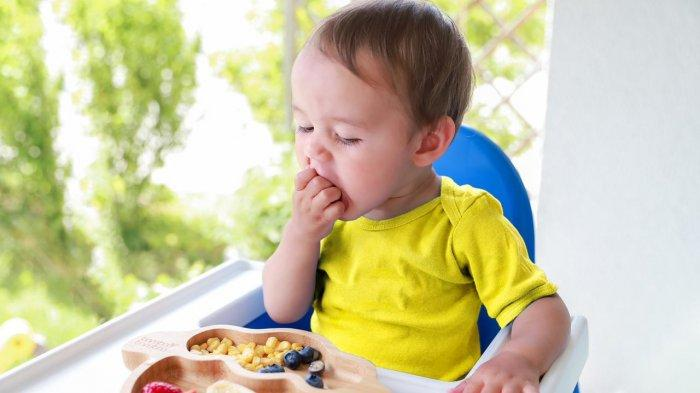 Bunda Yuk Simak, Ini Tips Agar Anak Suka Cemilan Sehat