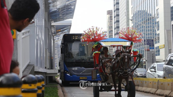 delman-nekat-melintasi-jalur-bus-transjakarta_20190506_103922.jpg