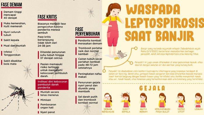 Waspada, 8 Penyakit Ini Sering Menyerang saat Musim Hujan: Demam Berdarah hingga Leptospirosis