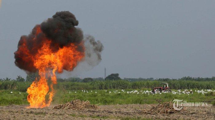 Punya Daya Ledak Tinggi, 11 Bom Lontong Dimusnahkan Densus 88 di Poso