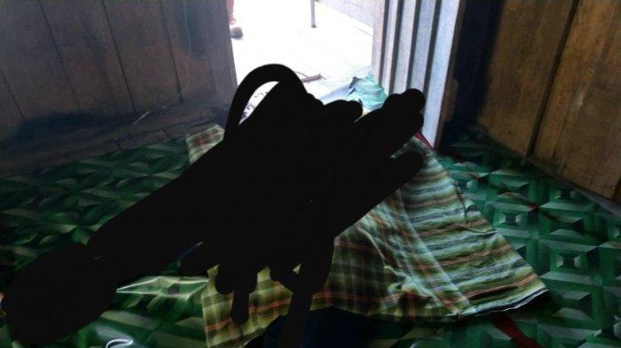 7 Fakta Suami Bunuh Istri di Nunukan, Pelaku Suka Main Pukul dan Korban Curhat Tak Tahan