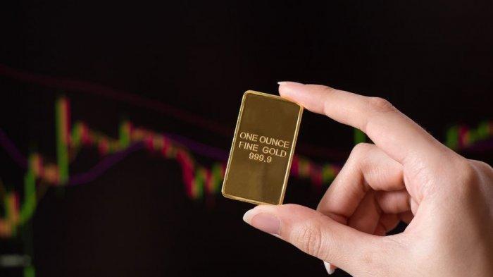 Penting! Ini 3 Tips Diversifikasi Investasi untuk Meminimalisir Risiko