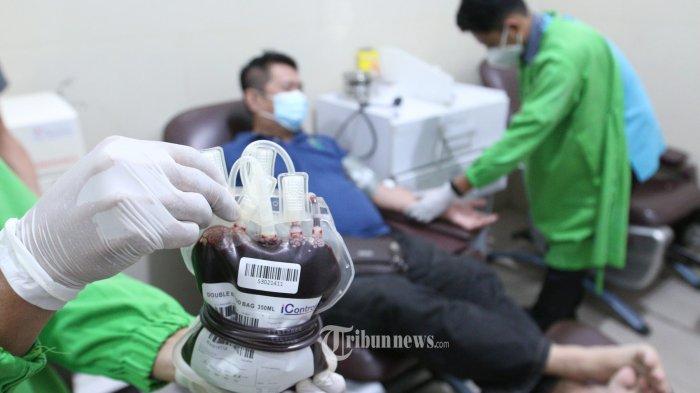 Siapa yang Bisa Menerima Terapi Plasma Konvalesen? Ini Cara Daftar & Syarat Donor Plasma Konvalesen