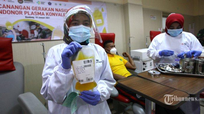 Petugas Palang Merah Indonesia (PMI) Kota Bandung melakukan seleksi dengan mengambil sampel plasma darah dari penyintas Covid-19 (orang yang pernah menderita Covid-19 dan sembuh) yang akan mendonorkan plasma konvalesen di Kantor PMI Kota Bandung, Jalan Aceh, Kota Bandung, Jawa Barat, Selasa (19/1/2021). PMI Kota Bandung mencatat hingga akhir 2020, penyintas Covid-19 yang mendonorkan plasma konvalesennya sekitar 40 orang, sementara sekarang ini jumlah pengambilan plasma konvalesen dalam sehari sekitar 3-8 kali. Terapi plasma konvalesen dapat menjadi alternatif pengobatan bagi pasien positif Covid-19 kategori ringan dan berat, tapi tidak untuk yg kritis. Tribun Jabar/Gani Kurniawan