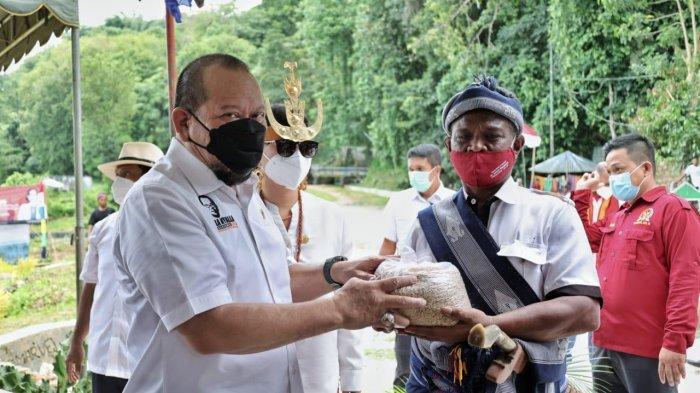 Panen Raya di Sumba Barat Daya, Ketua DPD RI Sebut Impor Beras Bukan Solusi