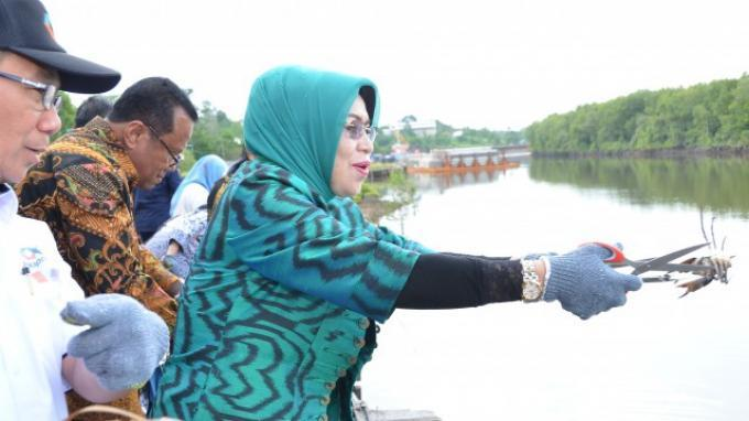 Komisi IV Bersama BKIPM Balikpapan Lepas Liarkan 1.600 Kepiting