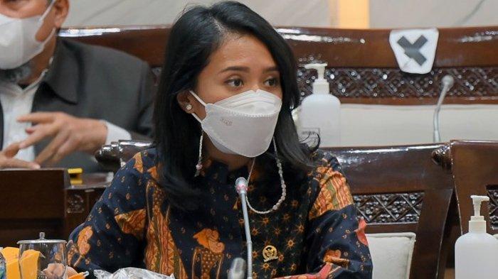Puteri Komarudin: Pentingnya Penguatan Teknologi Informasi untuk Reformasi Perpajakan