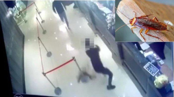Sebuah Restoran Diteror Geng Kriminal, Dua Pria Berpakaian Hitam Sebar Ribuan Kecoak