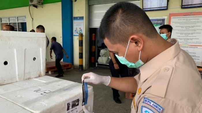 UMKM Asal Ambon Ekspor Kepiting Hidup ke Singapura