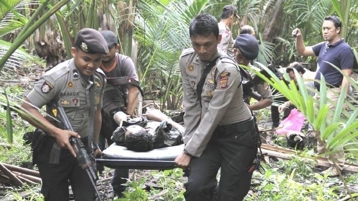 Aparat Ditreskrim Polda Aceh bersama anggota Polres Pidie, Kamis (21/5) mengevakuasi jasad anggota kelompok Din Minimi, Yusliadi bin Rusli (27) alias Mae Pong yang tertembak dalam kontak tembak antara TNI/Polri dengan kelompok bersenjata tersebut, Rabu (20/5) pukul 23.30 WIB di Desa Bayu Gintong, Kecamatan Grong-Grong, Pidie. Dalam peristiwa itu tiga orang tewas. SERAMBI/IDRIS ISMAIL