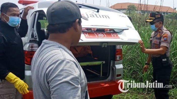 Polisi saat mengevakuasi mahasiswi korban pembunuhan yang ditemukan di Lahan kosong di Lingkar Timur Sidoarjo