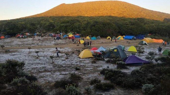 Gunung Gede Pangrango Ditutup Sebulan untuk Cegah Risiko Cuaca Ekstrem