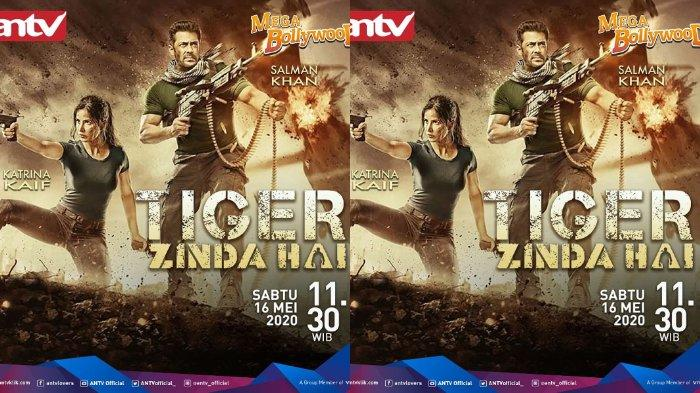 Sinopsis Film Tiger Zinda Hai Mega Bollywood ANTV Sabtu Siang Ini, Artis Salman Khan & Katrina Kaif