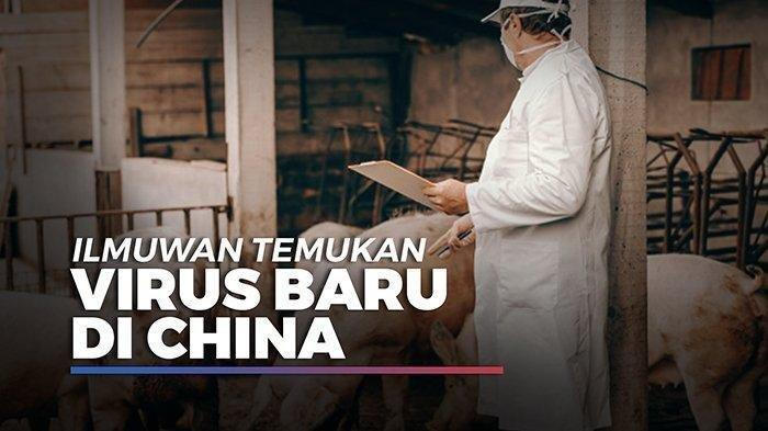 virus baru flu babi di China.