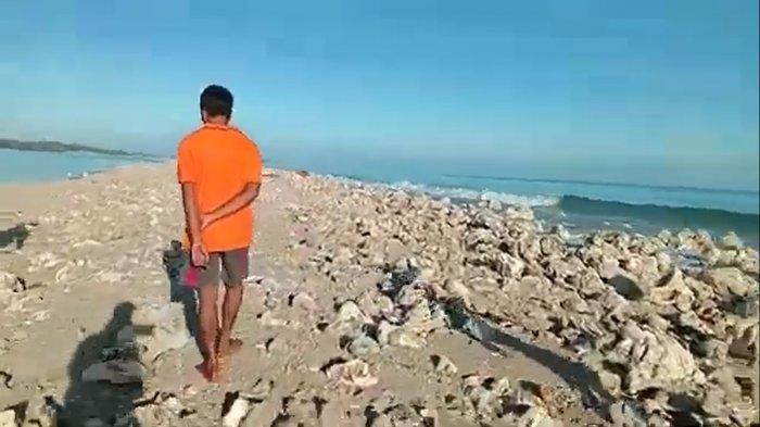 Pasca Badai Seroja NTT, Muncul Pulau Baru di Rote Ndao, Masyarakat Ingin Menamai Pulau Paskah