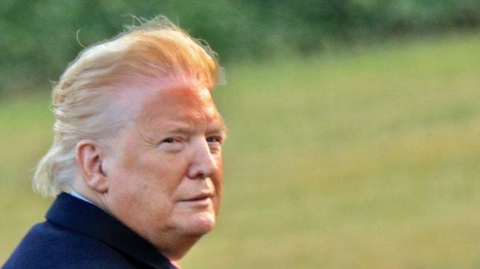 Foto Presiden Donald Trump Kembali ke Gedung Putih Langsung Menjadi Bahan Meme