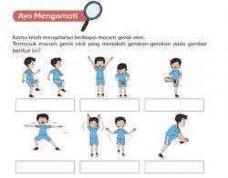 Gambar Gerak Otot
